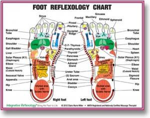 reflexology-chart